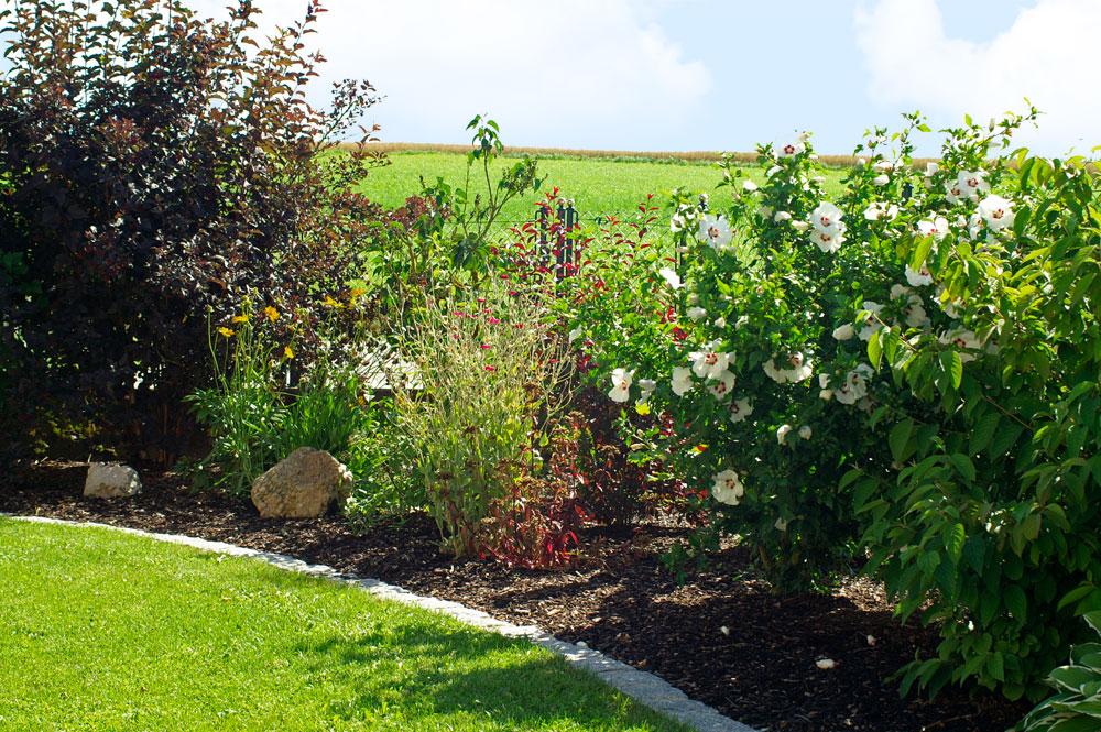 Bepflanzungen bruckmeier garten und landschaftsbau for Dekoelemente garten